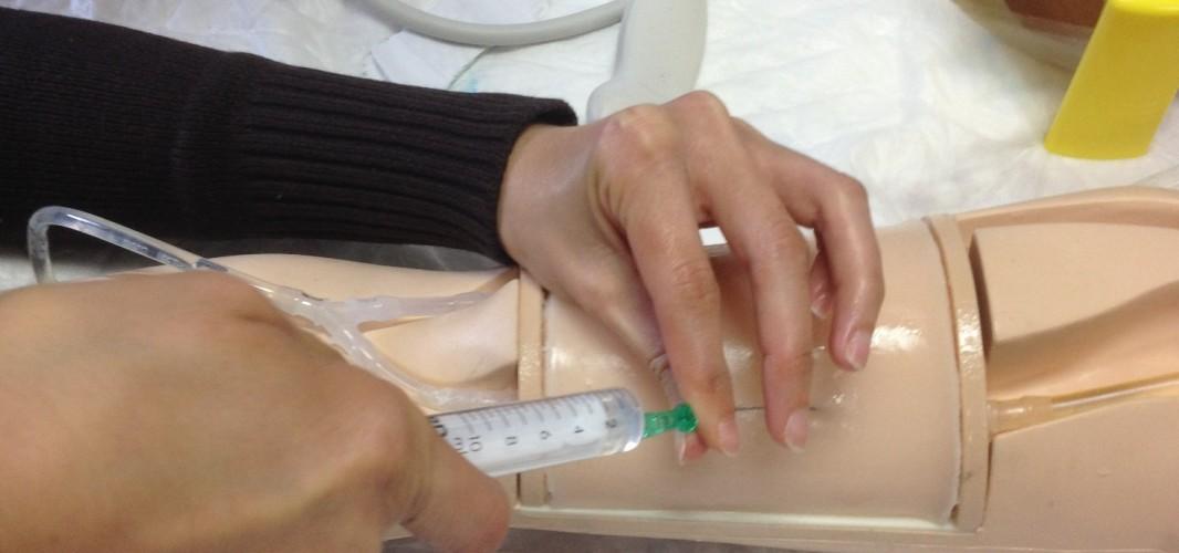 La Agencia Sanitaria Alto Guadalquivir oferta a sus profesionales más de 2.500 plazas para su formación