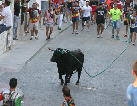 toro de cuerda 01
