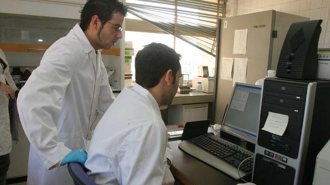 Investigadores-UCO-laboratorio_1101199987_64181139_667x375