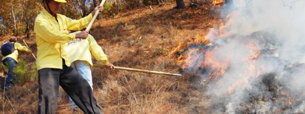 Asaja destaca la labor de los agricultores y ganaderos en la lucha contra los incendios