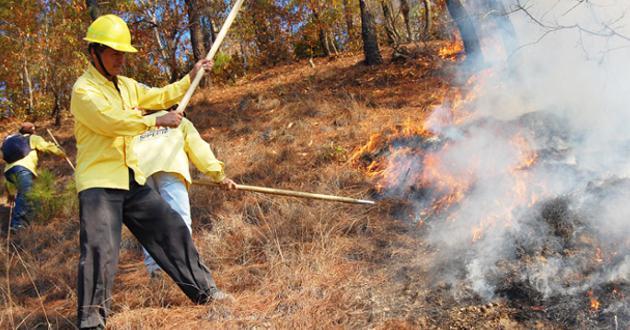 Incendio-forestal-Coahuila-controlado-1504850
