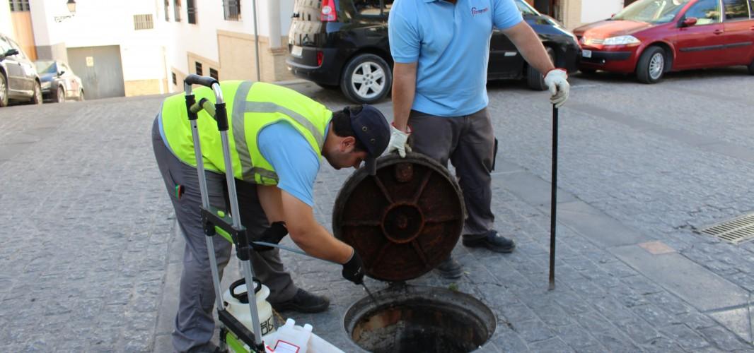 Aguas de Montilla continúa con la campaña anual de desinsectación y desratización del alcantarillado municipal