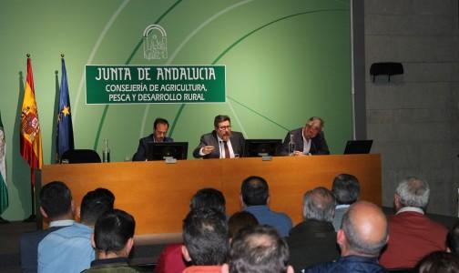 """Sánchez Haro destaca la """"buena salud"""" de la que disfruta el ganado andaluz gracias a la efectividad de los programas sanitarios"""