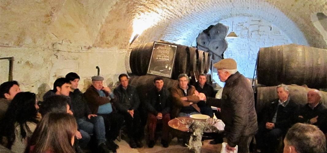 """""""Cómo podar la viña para que viva más de cien años"""": expertos de las Universidades de Navarra y Cádiz valoran la poda en la Denominación de Origen Montilla-Moriles"""