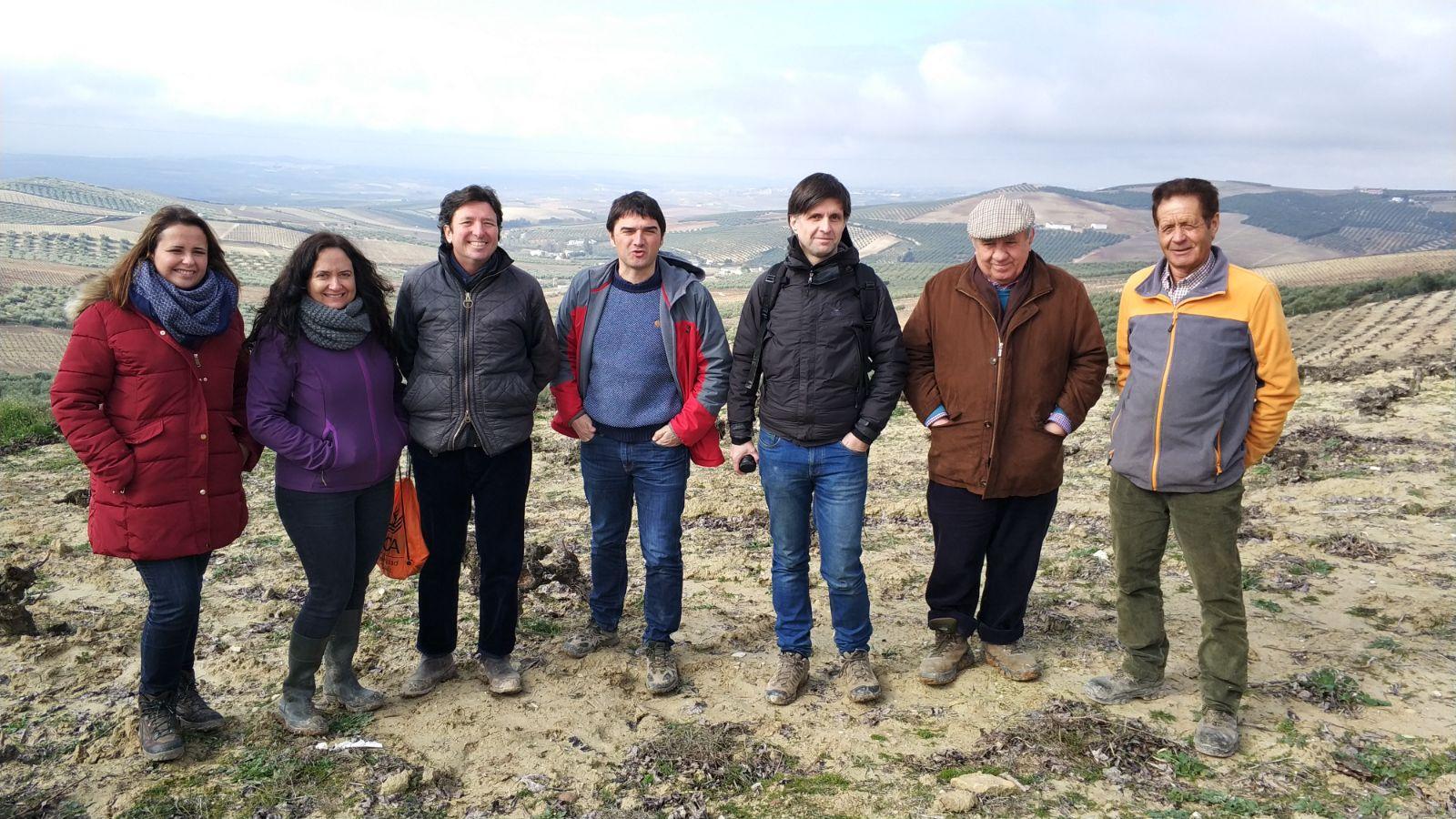 visita a las viñas DOP Montilla-Moriles
