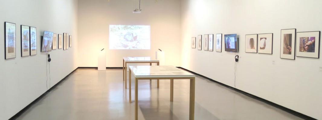 El programa Iniciarte selecciona 10 proyectos de jóvenes artistas visuales