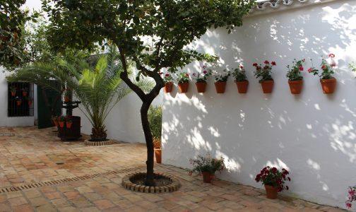 """""""Ven de patios"""" se suma a la oferta turística del mayo montillano"""