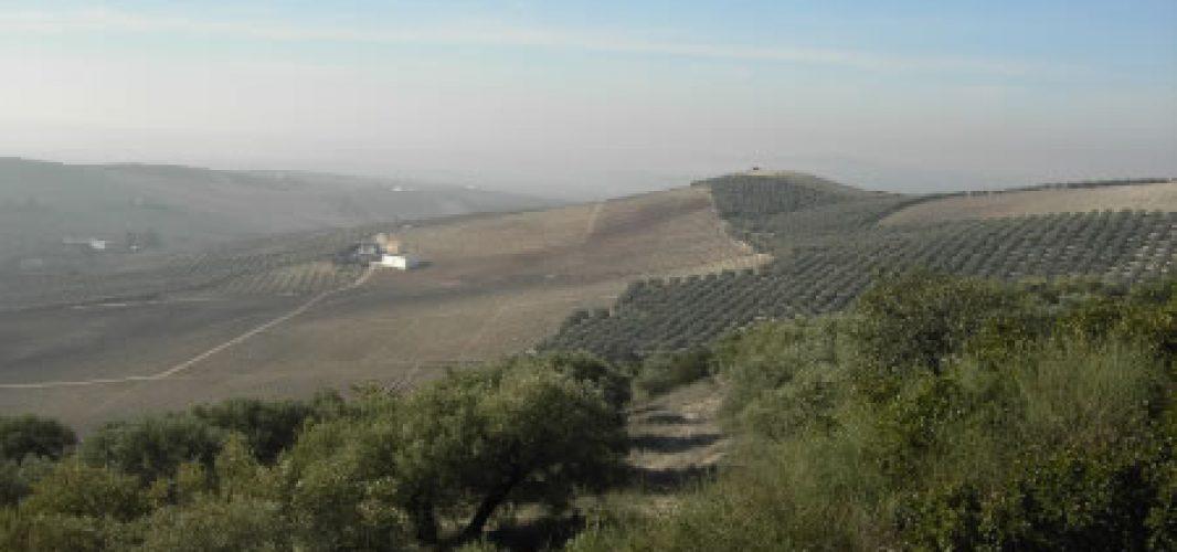 El Cerro Don Juan inaugura su nueva zona de aparcamiento facilitando el acceso a este enclave de nuestra Sierra